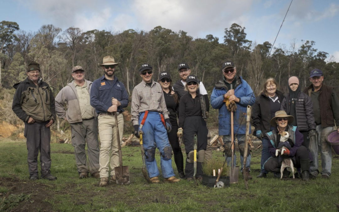 Nariel Tree Planting – Trees for Trout